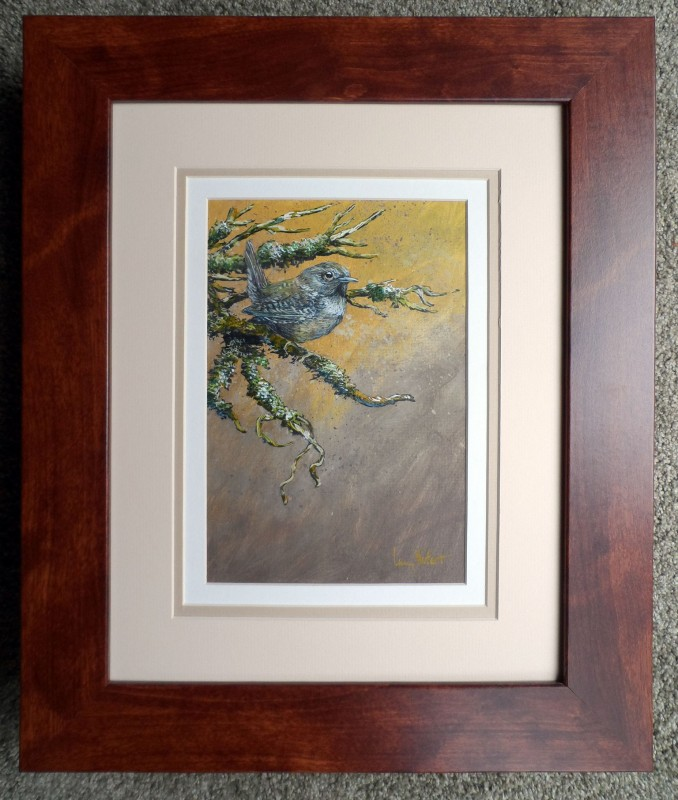 Winter-Wren-framed
