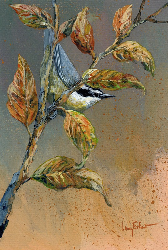 Nuthatch-Cherry