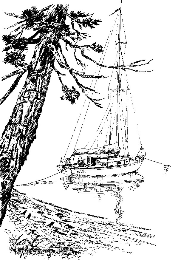 Sea Witch anchored