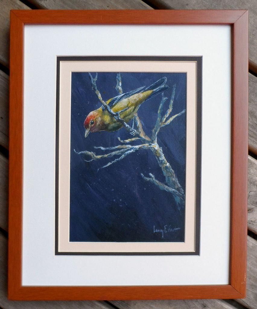 Western-Tanager-framed