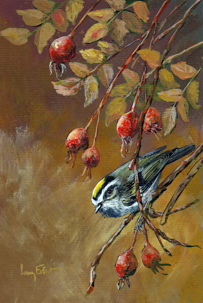Rose-Hips-and-Golden-crowned-Kinglet