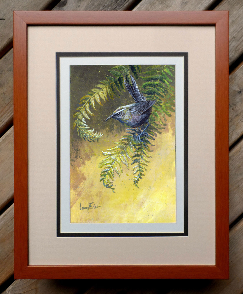 Bewicks-Wren-Yellow-Ferns-framed
