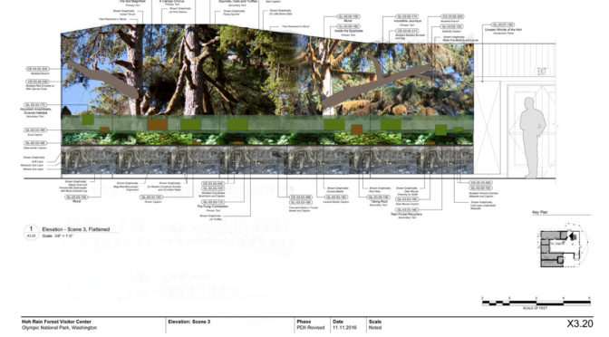 The Hoh Rainforest Visitor Center – sketches