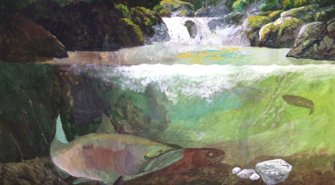 Salmon Cascades – A New Project in the Works