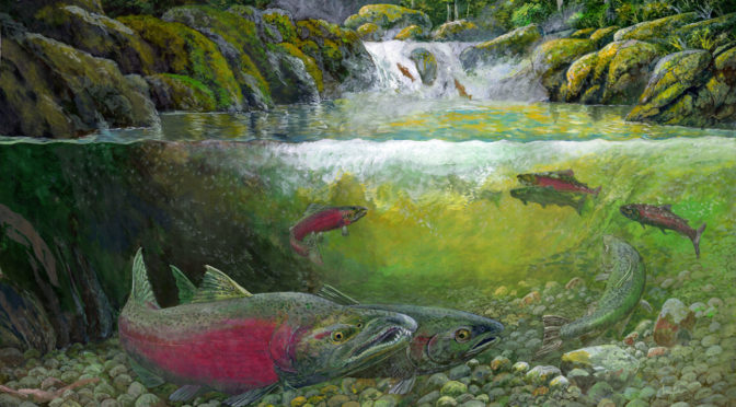 Salmon Cascades wayside painting for Olympic National Park