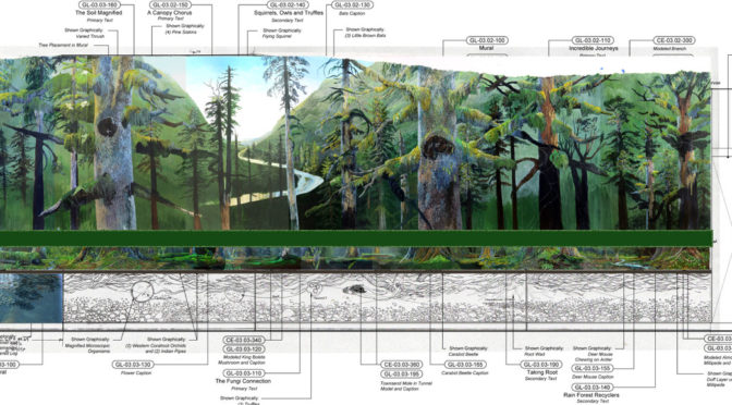 Hoh Rainforest Visitor Center progress