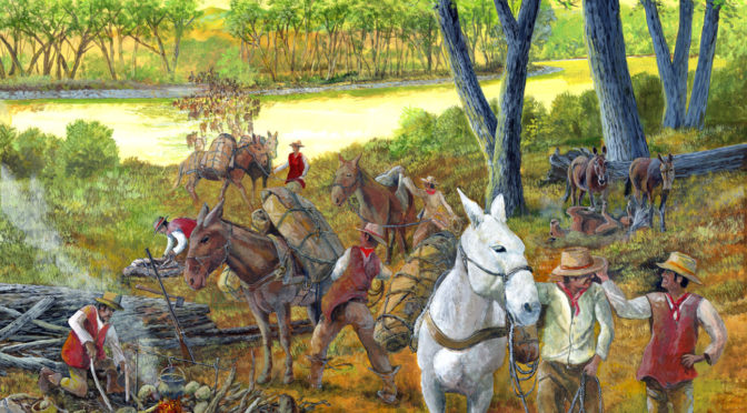 Mules and Horses – Old Santa Fe Trail painting for the National Trails System